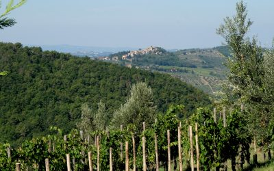 Lamole di Lamole – ein Chianti Klassiker